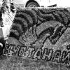 Выставка цветов в Кустанае. Август 1989 г.