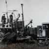 Уборка зерновых. 1956