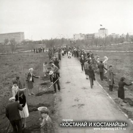 Засаживается Парк Победы. Май 1980 года