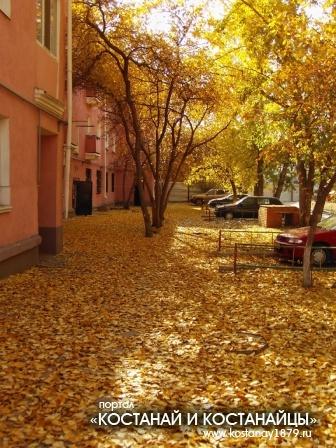 Осенний двор