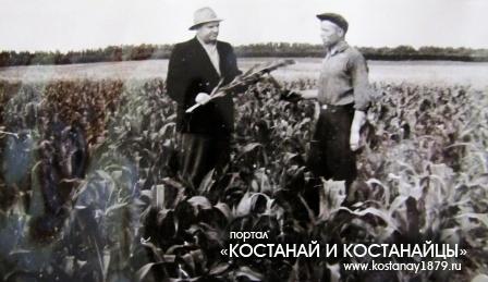 Магнайский совхоз главный агроном Лебедев Ф.Ф. с кукурозоводом Фот Генрихом