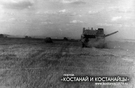 1983 год. Идет уборка урожая в совхозе им. Брежнева