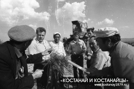 Сенокос в совхозах Ворошиловский и Камышненский