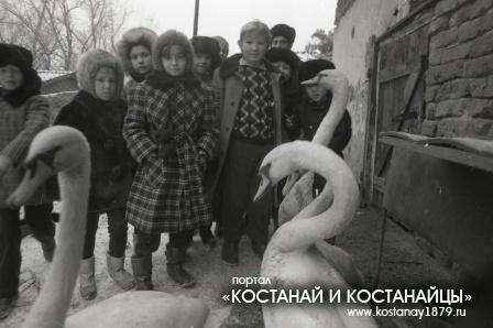 На станции юннатов. 1990 год